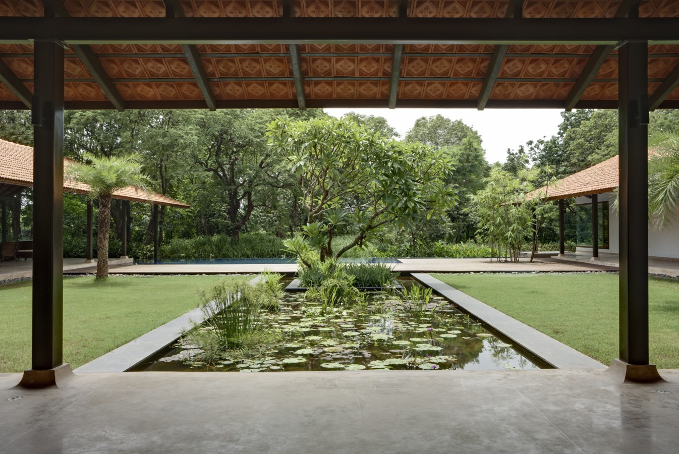 Courtyard house rma architects for Houses with courtyards