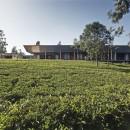 House In A Tea Garden